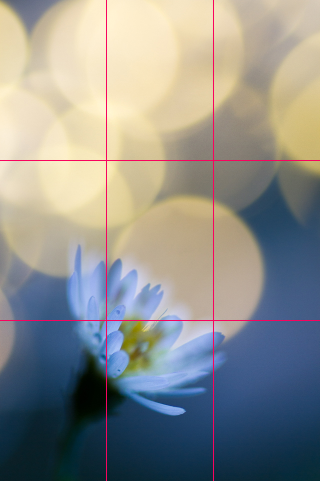 Using a rule of thirds grid